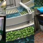 What is Aquaponics – A Definitive Guide To Start Your Own Aquaponics System