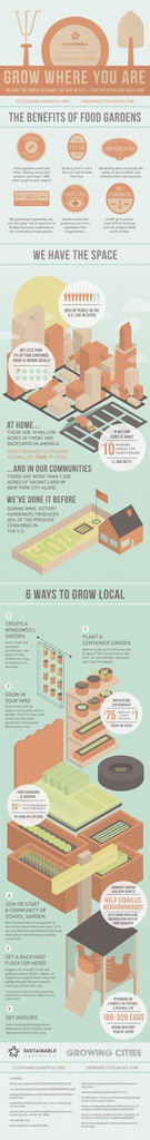 urban farming infographic