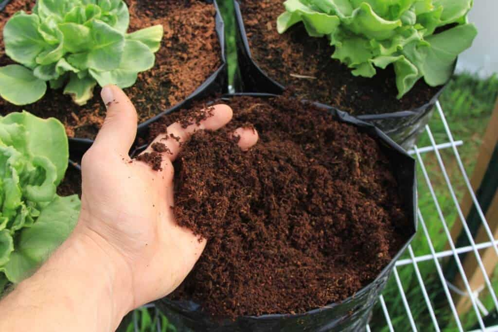 Using Coconut Coir In Hydroponic Gardening