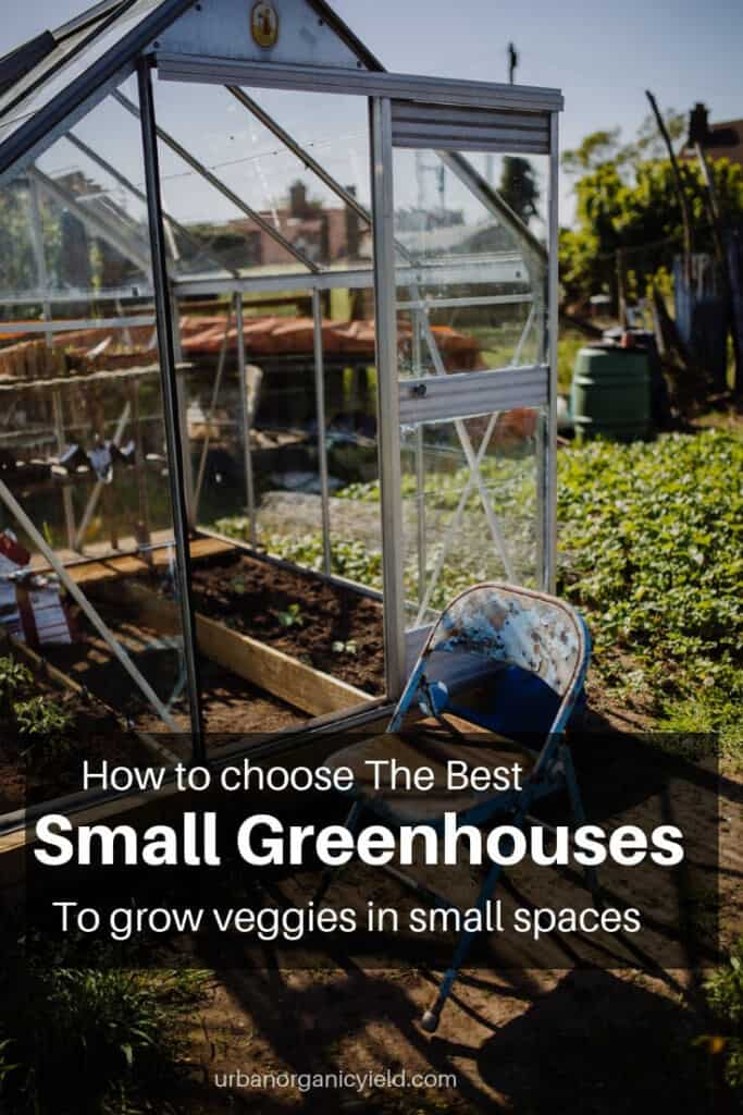 Best Small greenhouses grow veggies in small spaces (1)