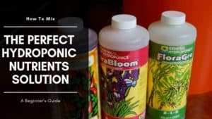 "How to Make Perfect hydroponic Nutrients Solution ""Liquid Fertilizer"" For your System"