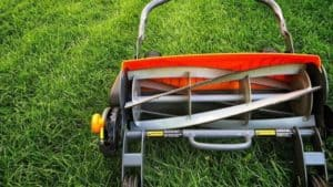 Best Reel Mower Review: Top 5 Manual lawn mower for Small Yard