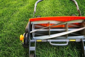 Best Reel Mowers for Your Small Yard : A Buyer's Guide + 5 Top Picks