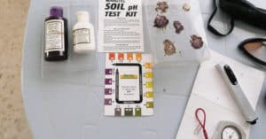 Best Soil Test Kits to Measure pH of Soil & Moisture Accurately