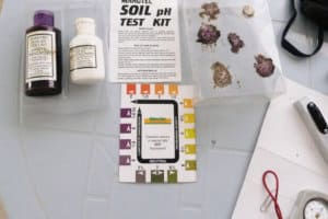 Best Soil Test Kits To Measure pH & Moisture of Soil Accurately