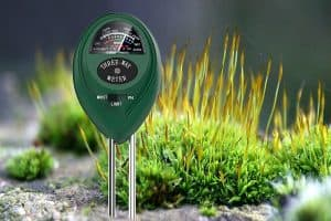How To Properly Use Soil PH Meters For Plants And Garden