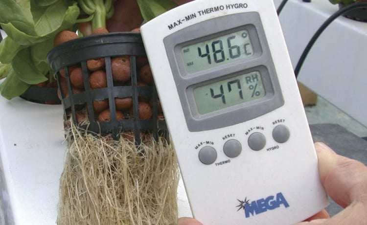 What Is The Ideal Nutrient Solution Temperature In Hydroponics?