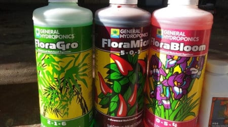 Best Hydroponic Nutrients For Your System To Maximize Plant Growth