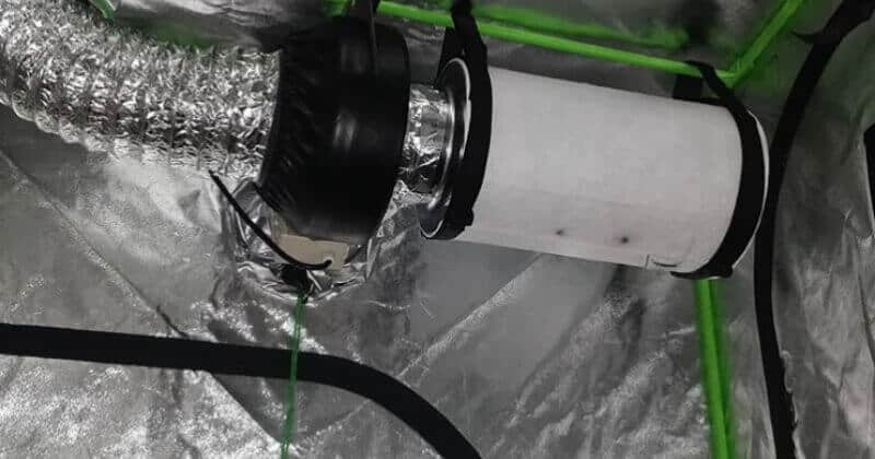 How To Setup Ventilation Systems In Your Grow Room & Grow Tent For Optimal Plant Health