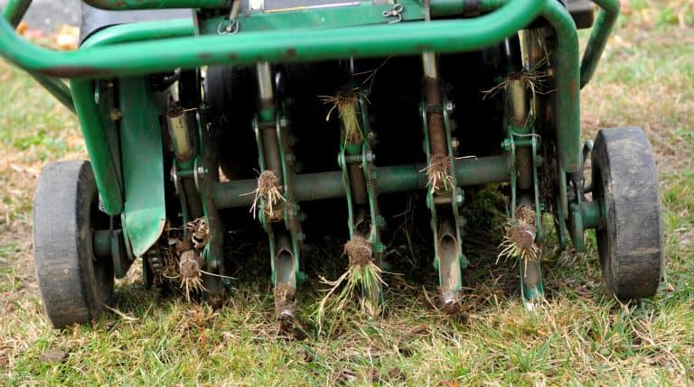 When To Aerate Lawn: Why, How And Best Time To Aerate And Overseed Lawn