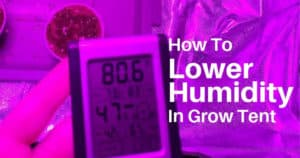 How to Choose the Right Size Dehumidifier for Grow Room & Grow Tent