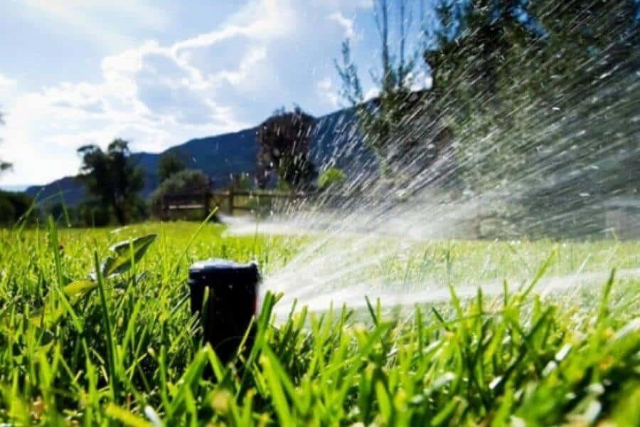 4._Install a Drip Irrigation System (1)