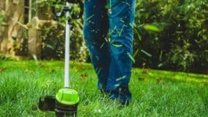 Best Battery Powered Weed Eater Review: Top 6 Cordless String Trimmer To Buy In 2019