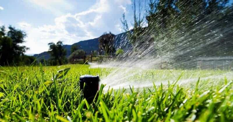 How Often Long Should I Water My Lawn With Sprinkler