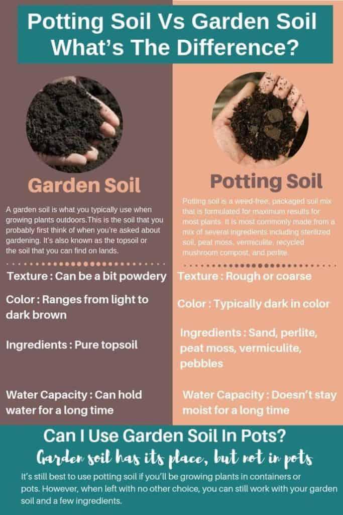 Potting Soil Vs Garden Soil_ What's The Difference_ Can I Use Garden Soil In Pots_