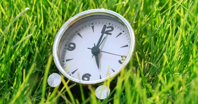 When Is The Best Time To Water Your Lawn In Hot Weather To Keep Grass Green