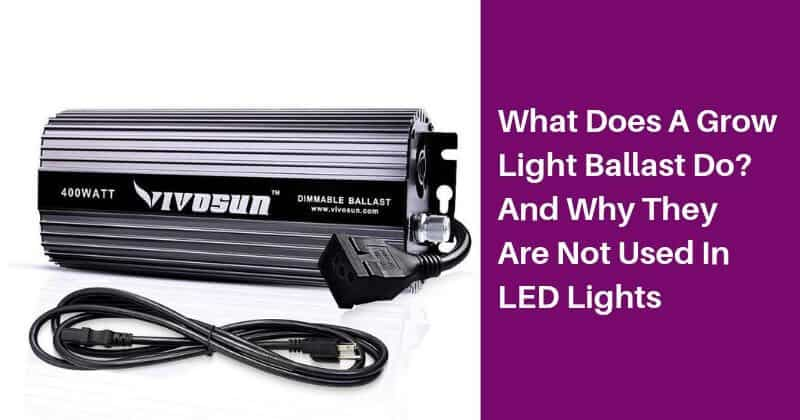 What Does A Grow Light Ballast Do_ And Why They Are Not Used In LED Lights