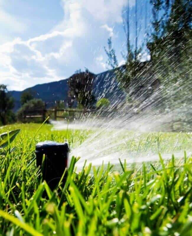 How Much Do You Water Your Lawn