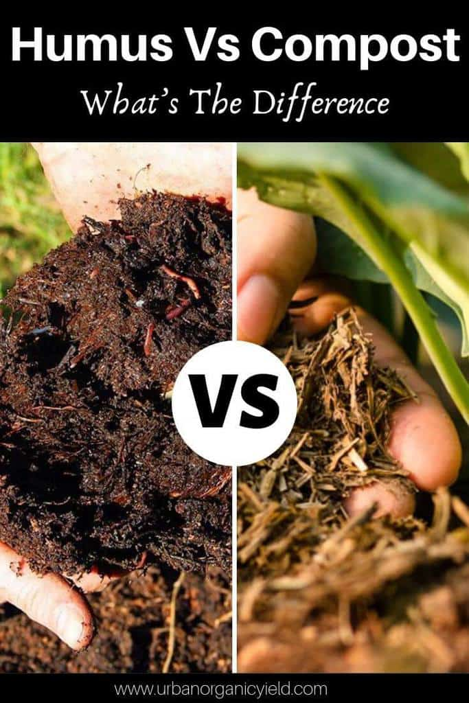 Humus Vs Compost What's The Difference_ And Which Is Better_