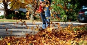 Best Lightweight Leaf Blowers