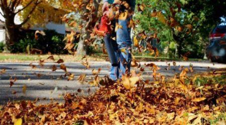 Best Lightweight Leaf Blowers