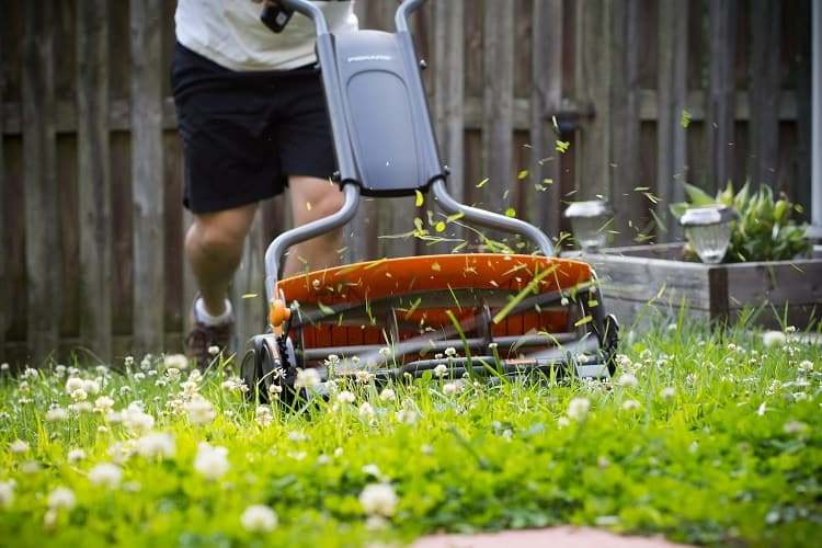 What Happens To The Grass Clippings Produced By A Reel Mower?