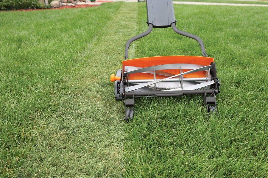 How To Cut Tall Grass With A Reel Mower In Just 4 Easy Steps