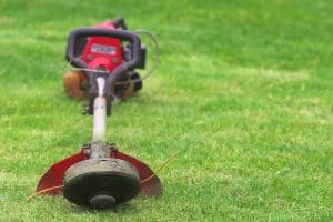 Weed Eater Won't Start After Running: How To Fix It