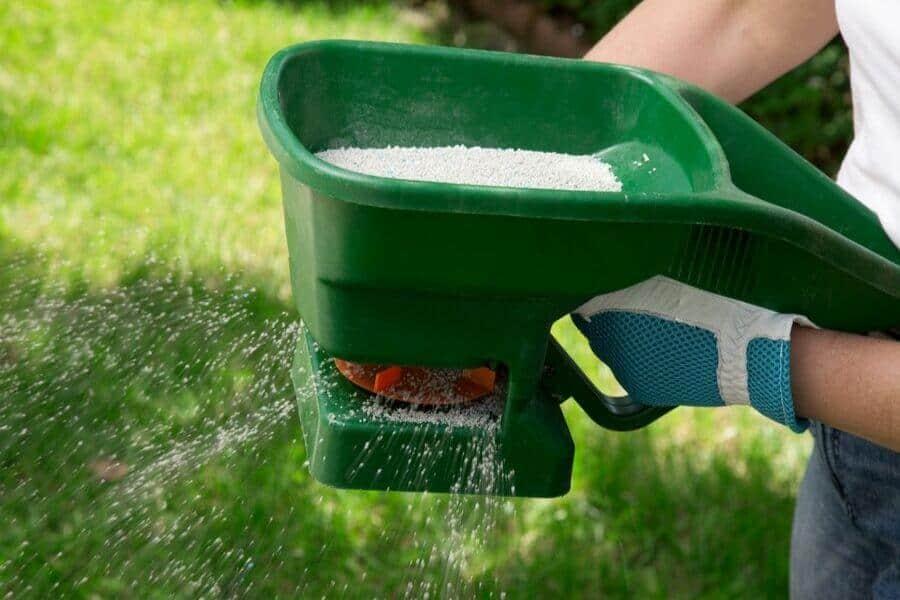 Do I Need To Fertilize My Lawn_