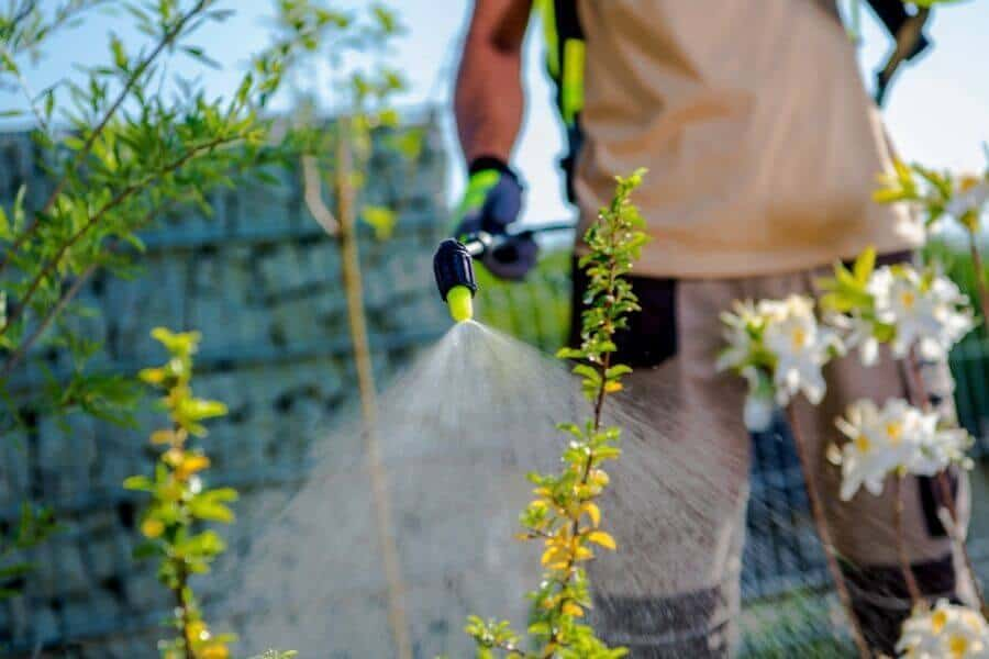 How Do I Apply Liquid Lawn Fertilizer?