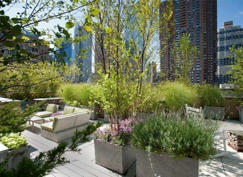 How Is Having A Rooftop Garden Beneficial