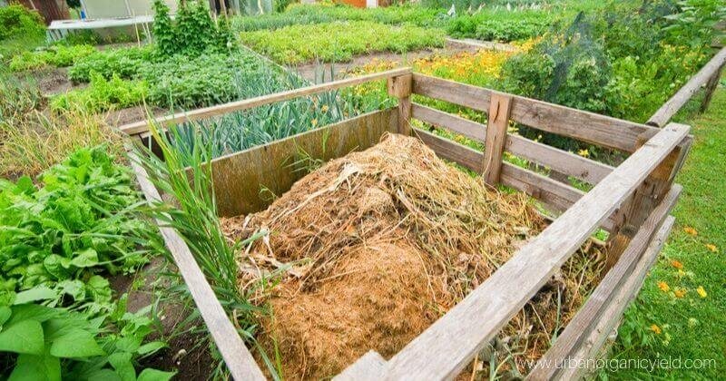 How Long Does It Take To Make Compost And How To Make It Faster