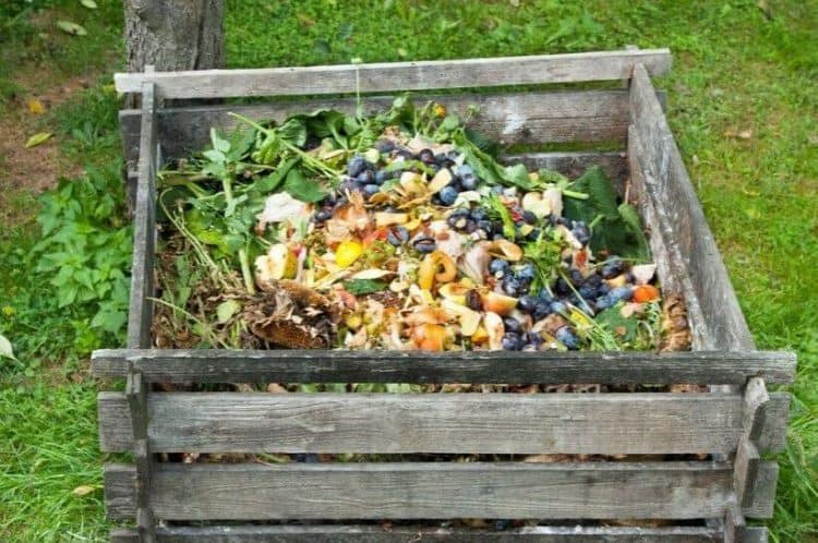 What Are The Pros And Cons Of A Compost Pile