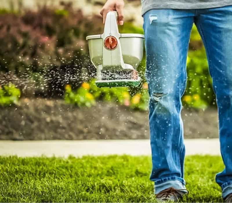 When Should I Fertilize My Lawn_