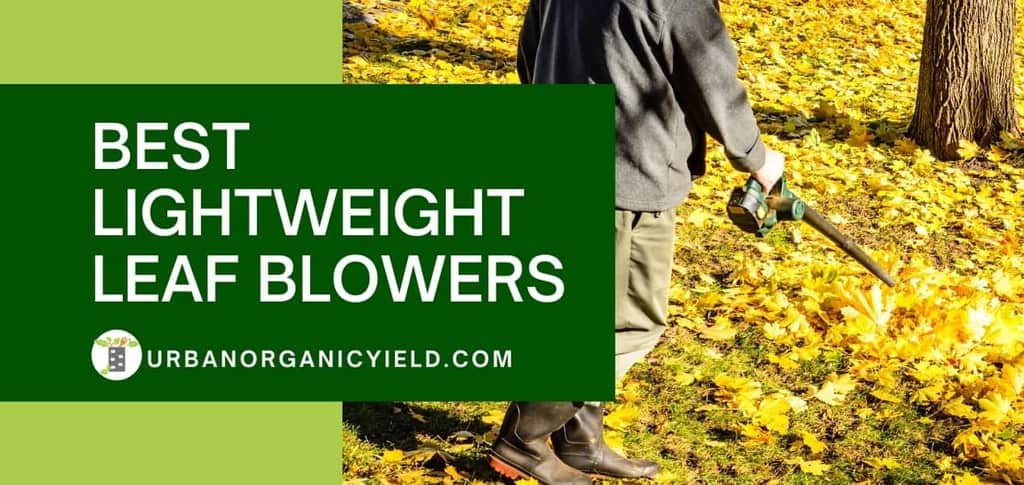 Best Lightweight Leaf Blowers [year]: Top Models with Perfect Power To Weight Ratio | UrbanOrganicYield.com