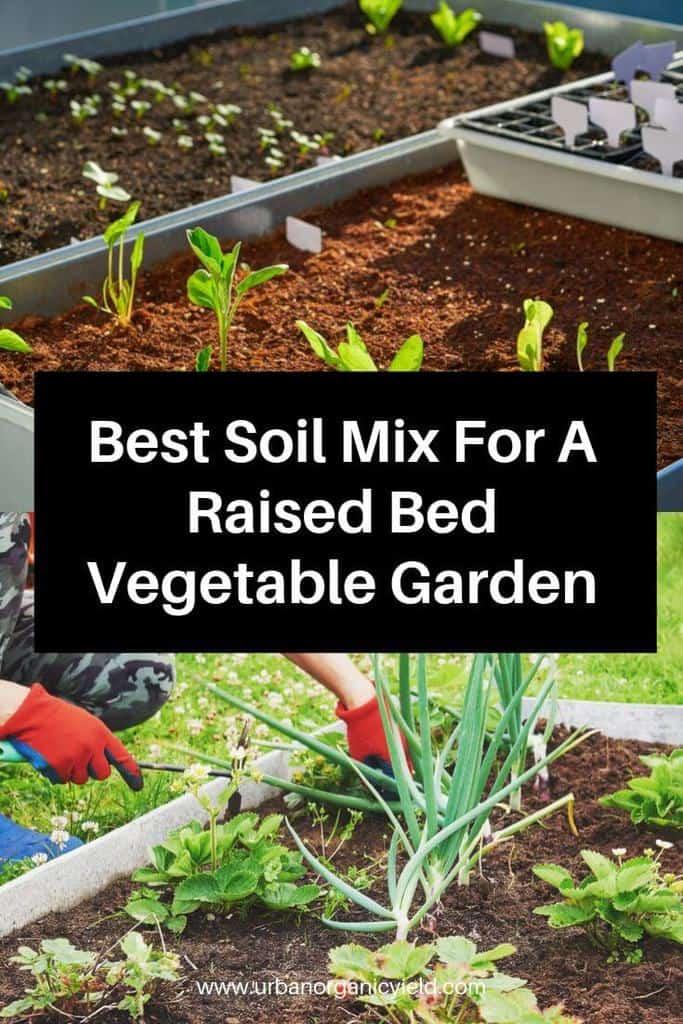 Best Soil Mix For A Raised Bed Vegetable Garden