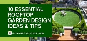 essential rooftop garden designs and ideas