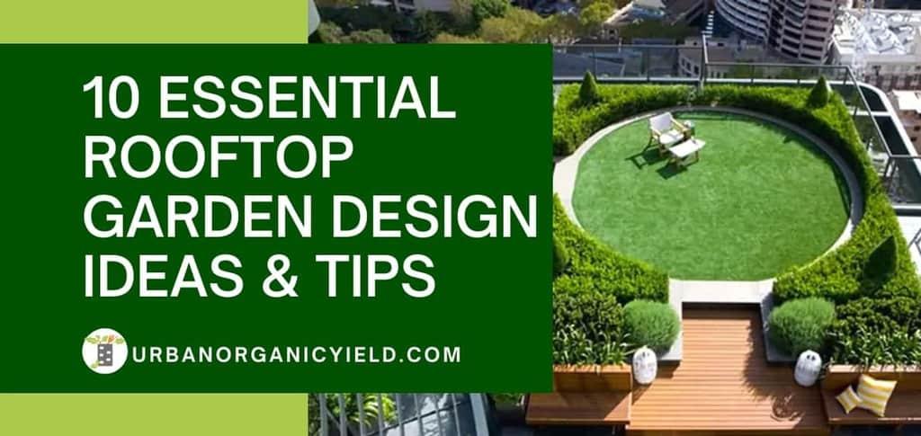 essential rooftop garden designs and ideas