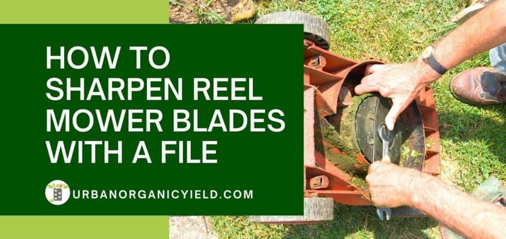 How To Sharpen Reel Mower Blades 1