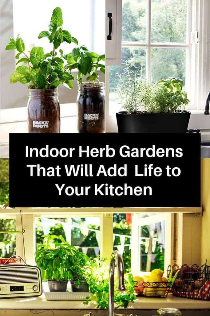 Indoor Herb Gardens That Will Add Life to Your Kitchen