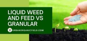 liquid weed and feed vs granular