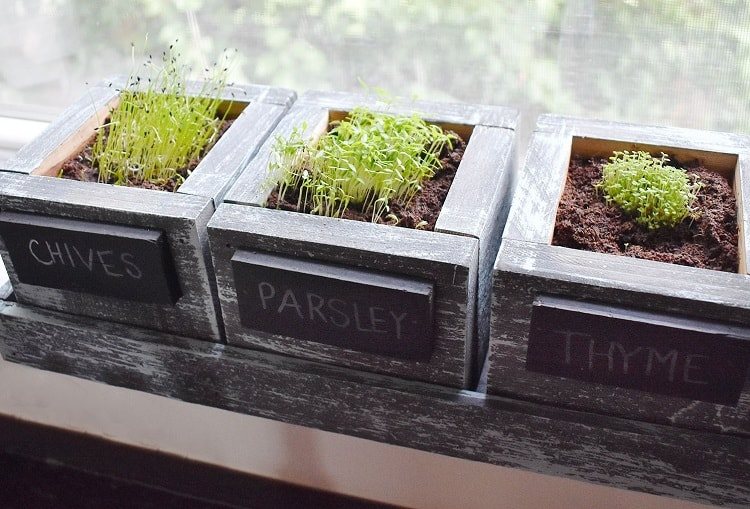 FATPLANTS Cedar Planter Box