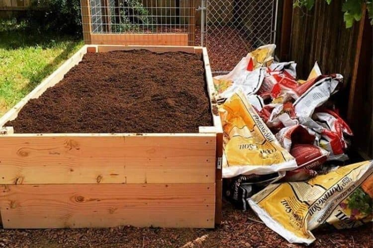 Should You Fill Your Raised Bed With Bagged Garden Soil_