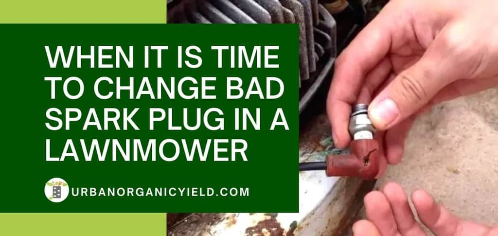 How to Tell When it Is Time to Change Bad Spark Plug in a Lawnmower | UrbanOrganicYield.com
