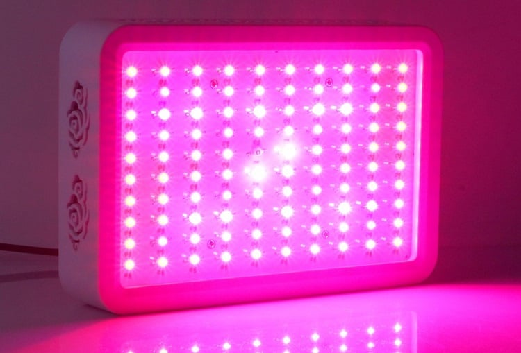 Full Spectrum LED Light
