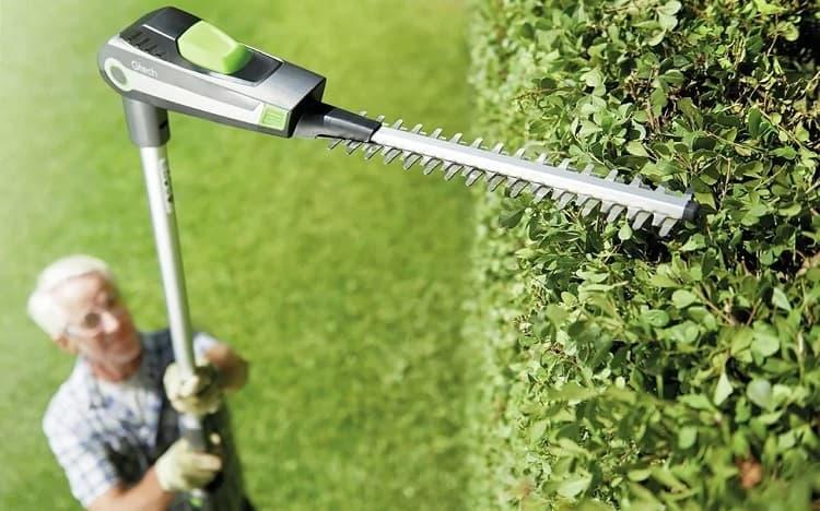 Cutting High Hedge