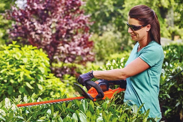 Using Safety Gear When Handling With Cordless Hedge Trimmer