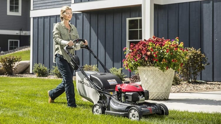 Mowing Lawn With Self Propelled Lawn Mower