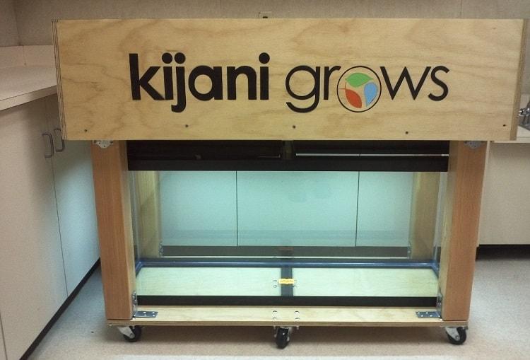 Kijani Grows