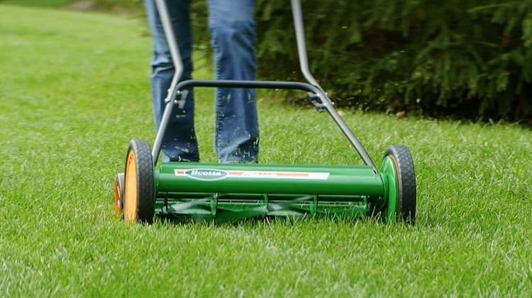 A Simple To Use Checklist For Choosing The Best Reel Lawn Mower